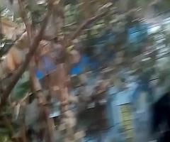 Colege Girl In West Bengal